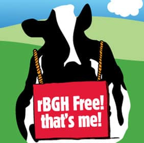 A cow holding a sign that reads rBGH Free! that's me!