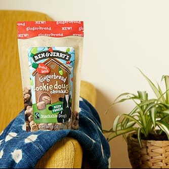 A bag of Ben & Jerry's Gingerbread Cookie Dough Chunks on the arm of the couch