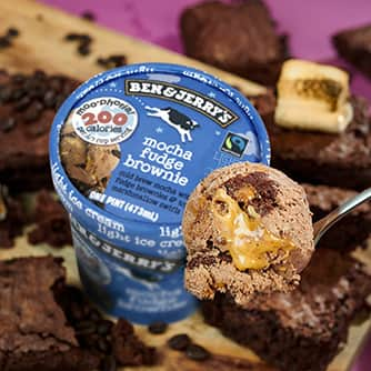 Mocha Fudge Brownie Moophoria