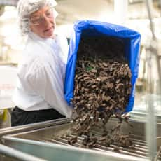 Team member pouring brownies chunks into the vat