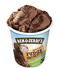 Chocolate Fudge Brownie Non-Dairy Frozen Dessert