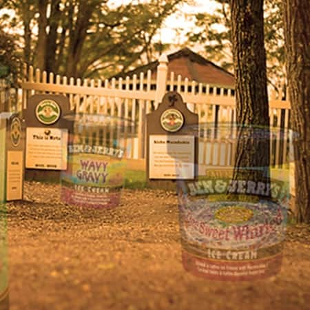 Graveyard of Ben & Jerry's flavors