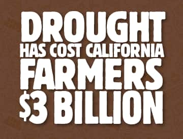 drought costs california farmers 3 billion