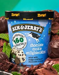You Should Try: Chocolate Cookie EnlightenMint Moo-phoria Light Ice Cream!