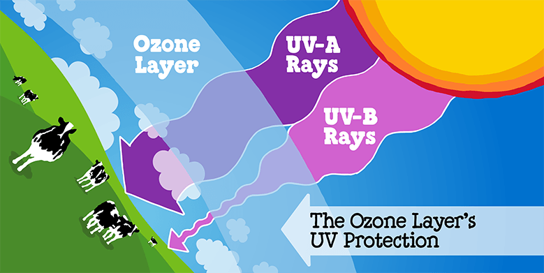 Ozone Layer's UV protection - Ben & Jerry's