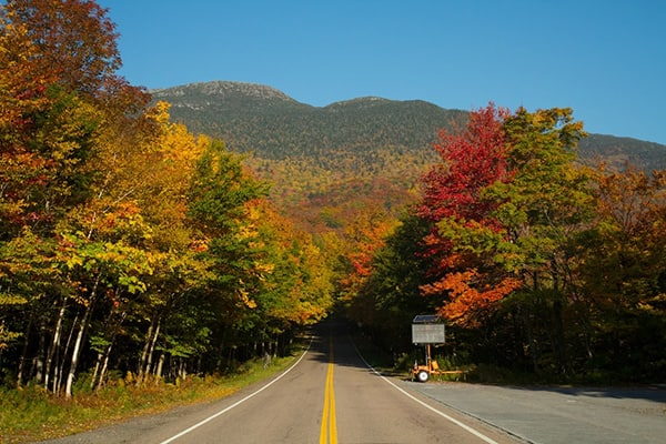 A long road going thru the fall foliage