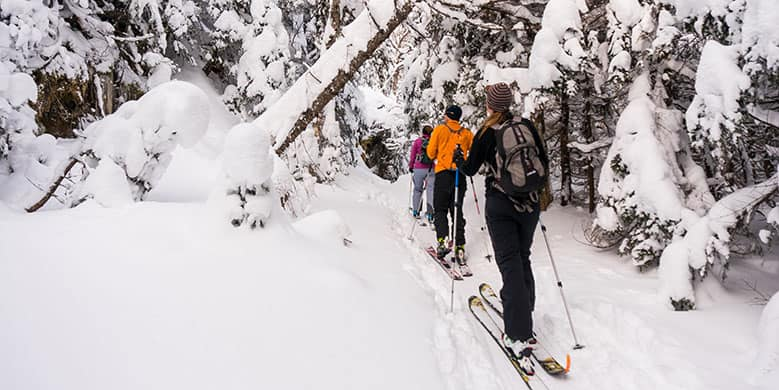 people cross country skiing at Catamount Trail - Ben & Jerry's