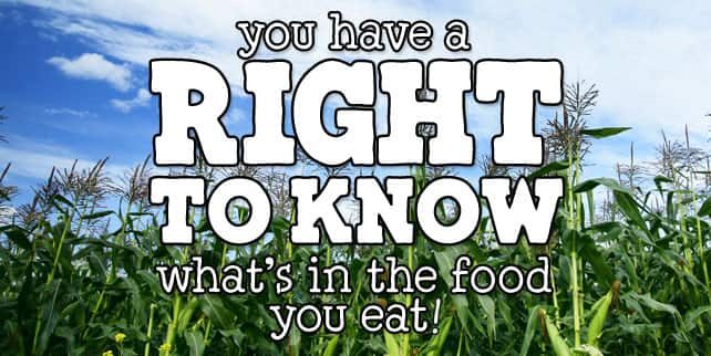 Vermont GMO Labeling Right To Know - Ben & Jerry's