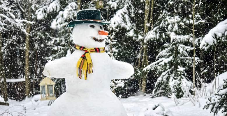A snowman with a hat, scarf, and a carrot nose.