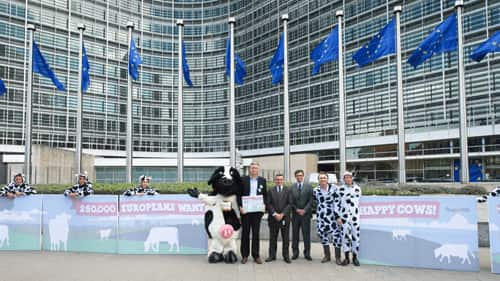 europeanUnionCows-1.png